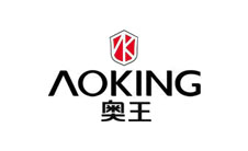 AOKING奥王